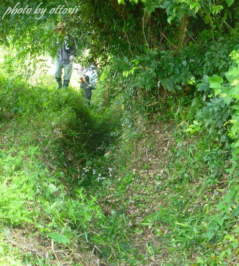 山へ芝刈りに