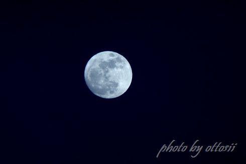 月がとっても