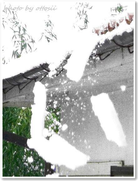 雪と・・・