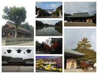 橿原神宮の風景