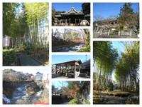 修善寺 観光の風景 2016 (12/23:伊豆)