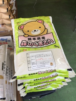 """本日2/10、""""熊本県産 森のくまさん""""新発売!"""