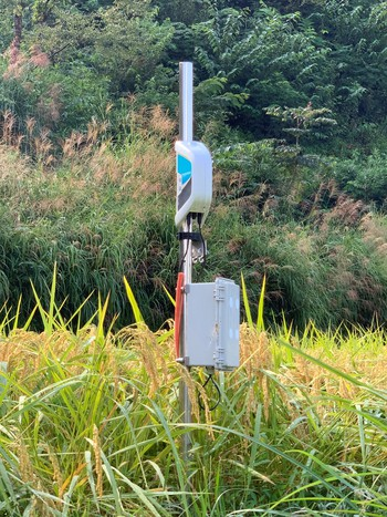黄金の棚田「土佐天空の郷」 2020/09/21 高知県本山町