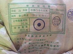 """北陸の新米が入荷!本日(9/30)""""富山県産 コシヒカリ""""発売!"""