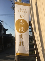 """遂に登場!福井県の新品種""""いちほまれ""""本日(10/27)発売です!"""