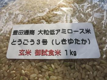 低アミロース米の新品種の試食!