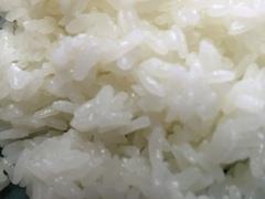 滋賀県産米、新米3品種の発売開始!!