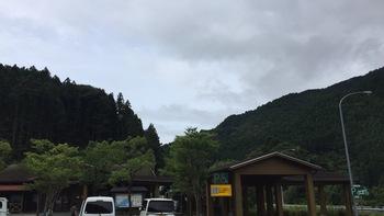 生育は順調、気になるのは、これからの天気・・・ 2016/07/09 高知県南国市
