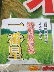 """平成28年産初登場!""""茨城県産 一番星""""本日(8/29)発売!"""