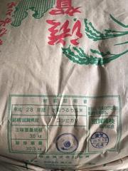 """""""滋賀県長浜市産 新米 コシヒカリ""""本日(9/27)より販売開始です!"""