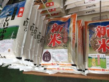 """""""新潟県産 新米 こしいぶき""""、本日(10/8)より販売開始!"""