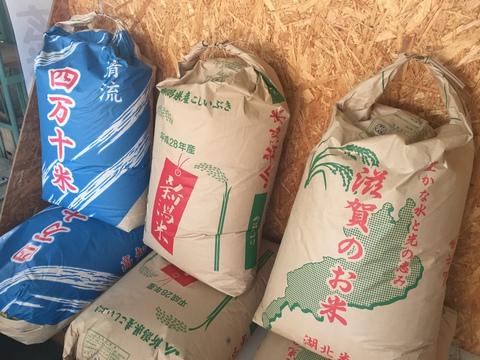 新米の玄米、並べました!