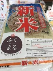 """今日(10/20)は頒布会配達日、""""茨城県産 ふくまる""""人気の新品種です!"""