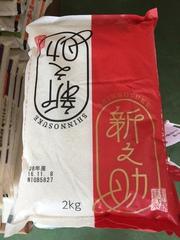 新潟県の新品種「新之助」が再び、入荷!