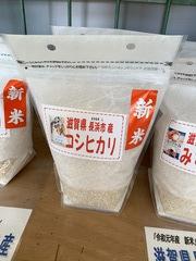 「滋賀県長浜市産 新米 減農薬栽培米コシヒカリ」発売しました!