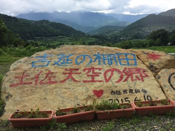 本山町の棚田アート