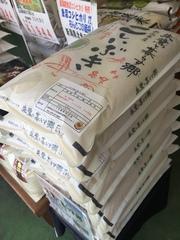 月末延長営業実施中!今月オススメのお米です!