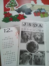 ★0351  引退犬チャリティーカレンダー