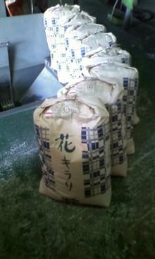 お米屋さんだけのお米、「花キラリ」
