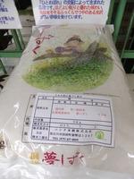 7月の頒布米「佐賀県産夢しずく」、店頭でも限定販売!