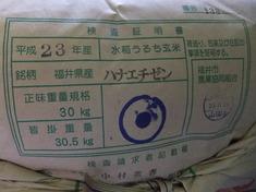 """""""福井県産 新米 ハナエチゼン""""入荷!本日9/7新発売!"""