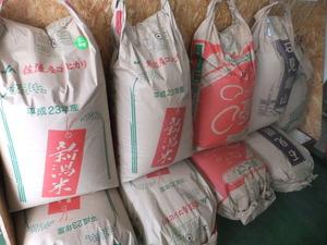 玄米も販売しています!