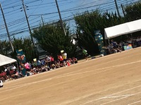 加古川中学校  体育大会