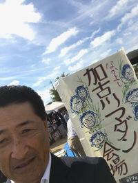 加古川マダン