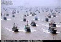 サンゴ狙う中国密漁船団