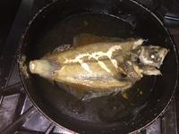 鰈の煮付けとウマズラハギの薄造り