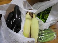 また・・・夏野菜
