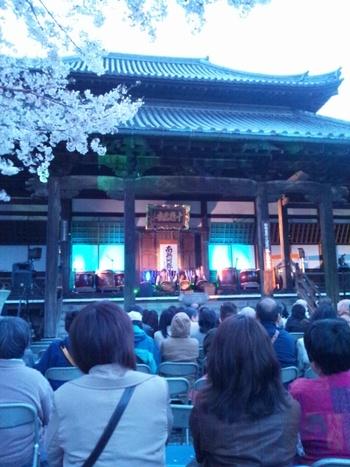 高砂YEG 4月14日観桜会