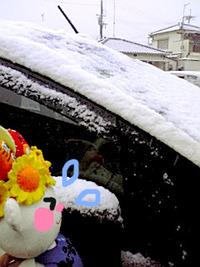 雪とおいら