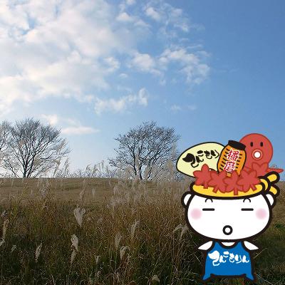 てんこもり秋の空