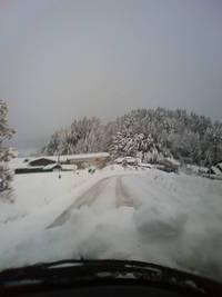 雪かき三昧!