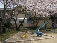日本の春 最終章