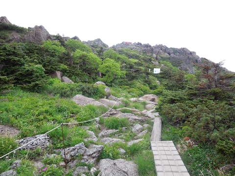 早池峰山山上庭園