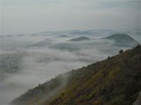 高御位山の雲海
