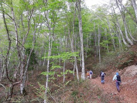 滝谷コース