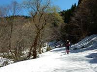 扇ノ山で残雪と新緑を楽しむ