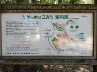 黍田富士とヤッホの森