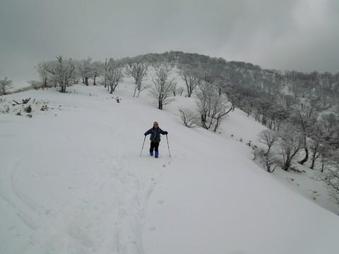 県境尾根の雪原