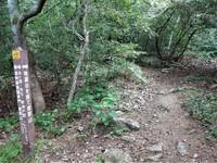 地蔵谷から摩耶山へ