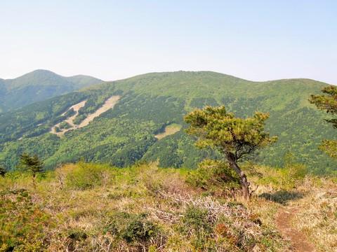 毛無山の眺望