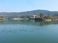 鴨池から網引湿原-明寺台へ