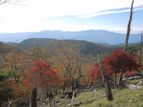 八経ヶ岳を望む
