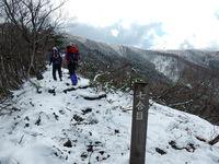 霧氷が輝く蘇武岳