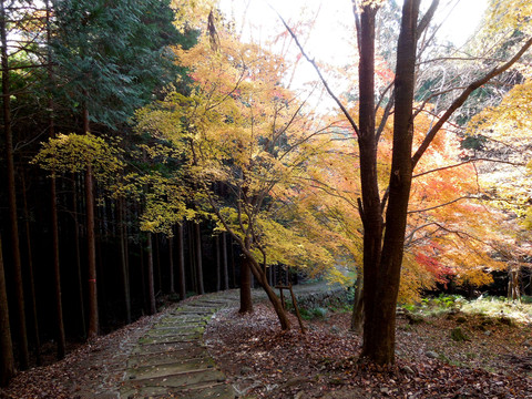 波賀城史跡公園
