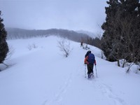 氷ノ山吹雪で敗退