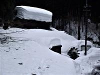 プチ吹雪の氷ノ山
